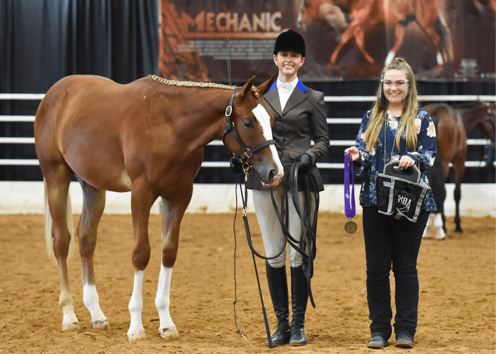 A horse and exhibitor standing for review during a showmanship class